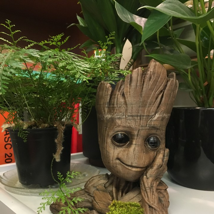"Picture of print of Baby Groot flower pot: ""Gardens"" of the Galaxy 2 This print has been uploaded by Gerard Hyland"
