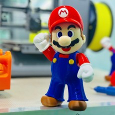 Picture of print of Super Mario complete set