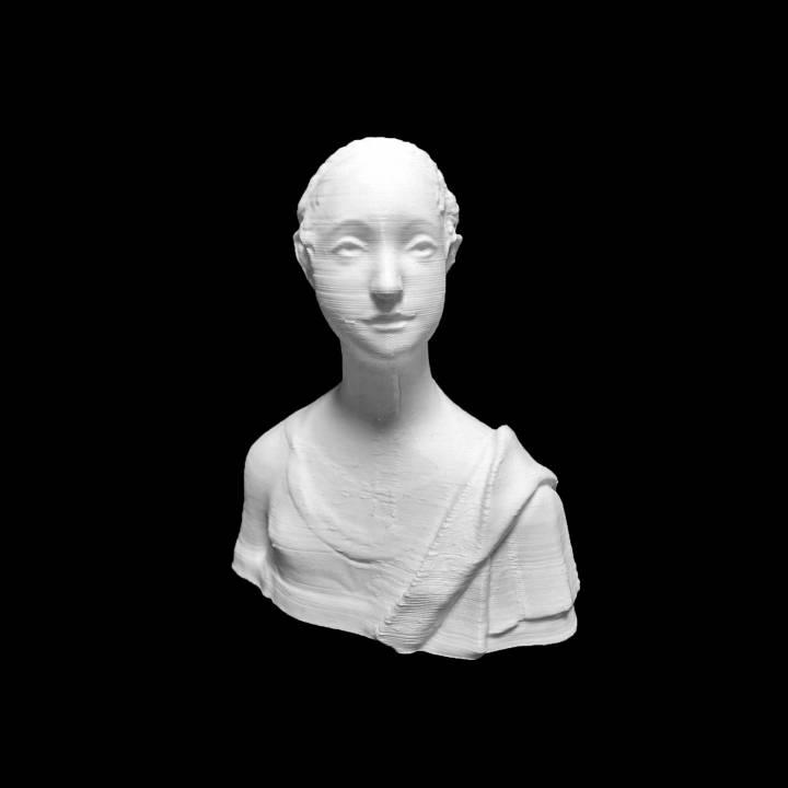 Portrait of Urbino