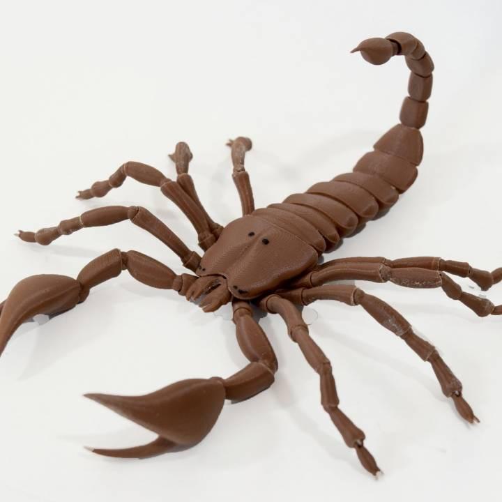 BJD pet Scorpion