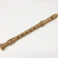 Picture of print of The Recorder Flute