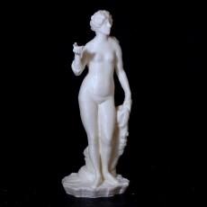 Venus Met Schelp