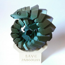 Picture of print of Save pangolins