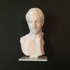 Marble bust of the youth