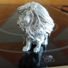 Picture of print of Hairy Lion