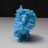 Hairy Lion print image