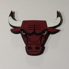 Chicago Bulls - Logo