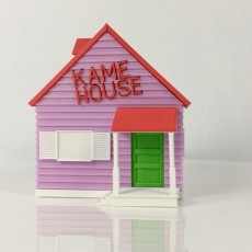 Picture of print of Kame House