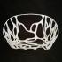 Organic Fruit Basket_ Algorithmic Geometry image
