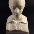 Bust of Ferenc Kolcsey image
