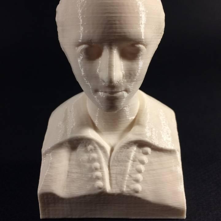 Bust of Ferenc Kolcsey