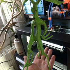Picture of print of Pickett - Bowtruckle