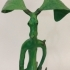 Pickett - Bowtruckle image
