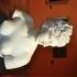 Bust of the Medici Venus image