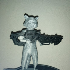 Picture of print of Guardians of the Galaxy Rocket Raccon