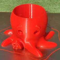 Picture of print of Octopus Planter