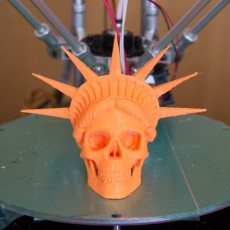 Picture of print of Liberty is Dying in High Resolution!