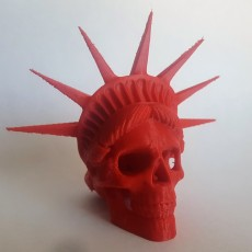 Picture of print of Liberty is Dying in High Resolution! This print has been uploaded by Victor Salazar