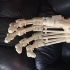Terminator Arm (inches) image