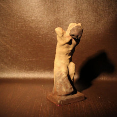 Picture of print of Narcisse 8 inch Rodin 3D scan From Portland Art Museum