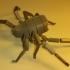 Scorpion - Scorpio image