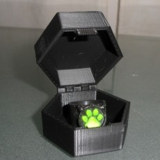 Miraculous container box