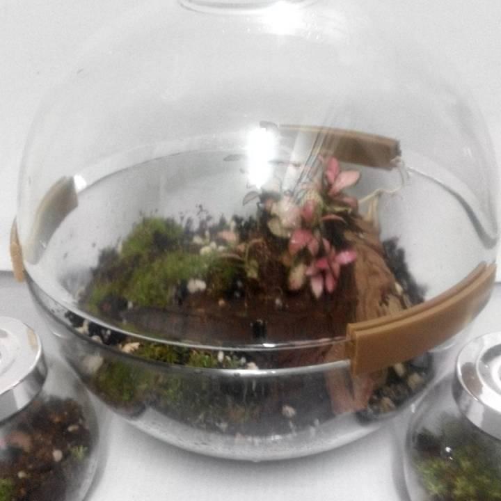 IKEA BLANDA serving bowl terrarium adapter clip