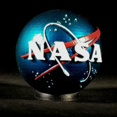 Picture of print of NASA Insignia