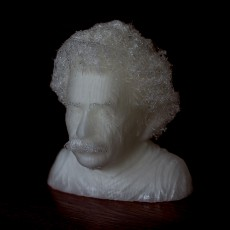 Picture of print of Hairy Einstein 这个打印已上传 Maciek