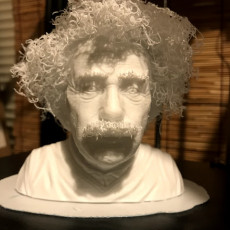 Picture of print of Hairy Einstein