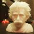 Hairy Einstein print image