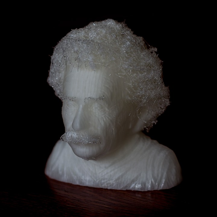 Picture of print of Hairy Einstein This print has been uploaded by Maciek