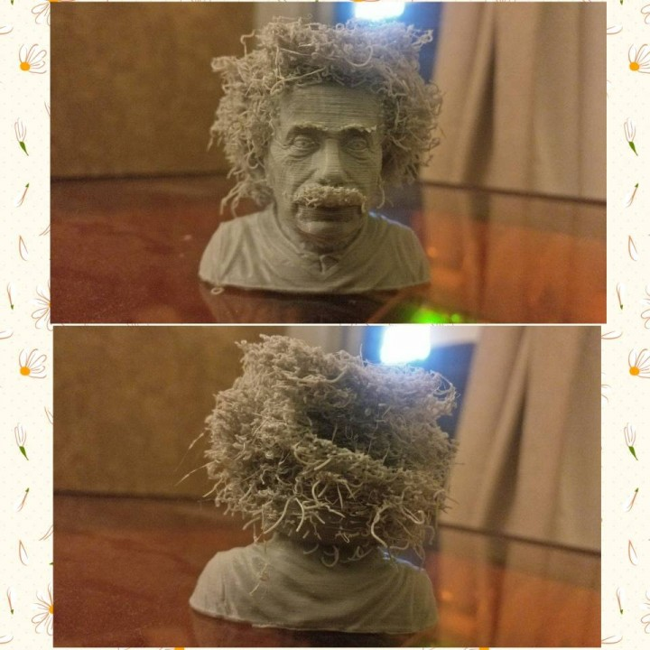 Picture of print of Hairy Einstein This print has been uploaded by Brendon DCruz