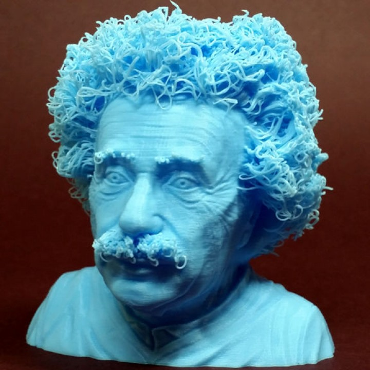 Picture of print of Hairy Einstein This print has been uploaded by 3DWithUs