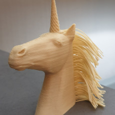 Picture of print of Hairy Unicorn (single and dual extrusion)