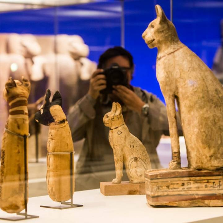 Animals for Sarcophagus Decoration - Cat 2