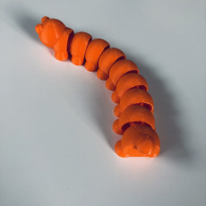 Picture of print of Caterpillar (Articulated)