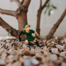 Picture of print of Young Link , Ocarina of Time