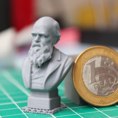 Picture of print of Bust of Charles Darwin