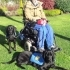 Wheelchair-Mounted Dog Treat Dispenser image