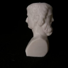Picture of print of Bust of Two-Faced Janus