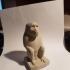 Monkey print image