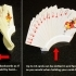Playing Card Holder - Holds Your Cards For You While You Play! image
