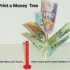 Money Tree... Money Does Grow On Trees! image