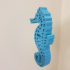 Seahorse - Balanced so it stands on its tail! print image