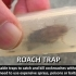 Roach Trap...Reusable trap to catch and kill cockroaches image