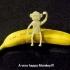 Monkeyz image