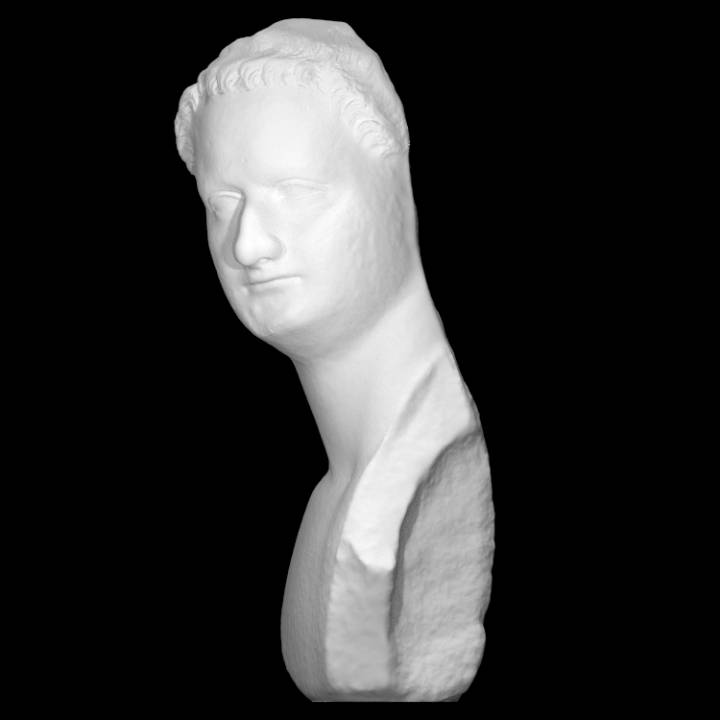 Portrait of Domitian