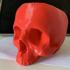 Skull Bowl print image