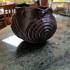 Prehistoric Native American Spiral Pot print image
